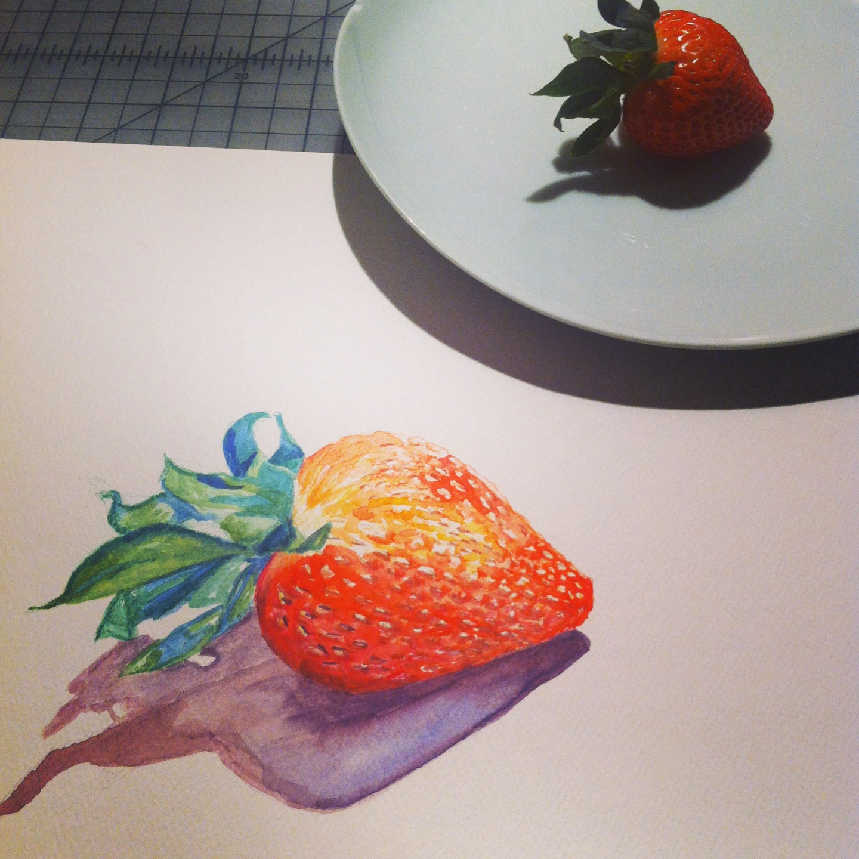 Organic Strawberry Study